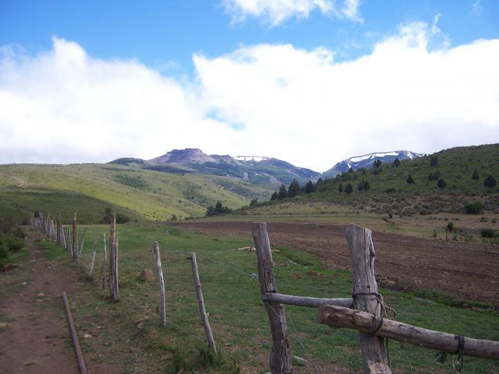 Mapuches y espías
